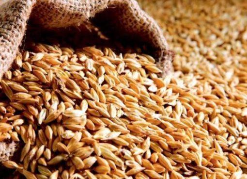 Украинским аграриям в этом году уже удалось намолотить 2,7 миллиона тонн зерна