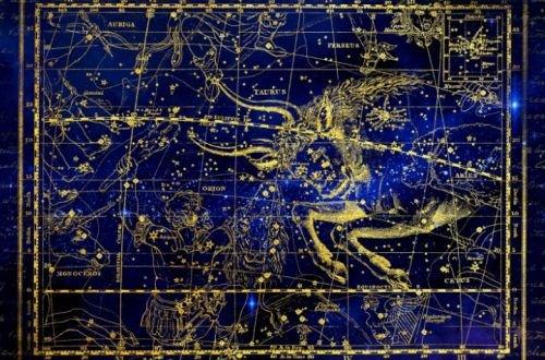 Три знака восточного гороскопа, которые станут богатыми в течение 10 лет