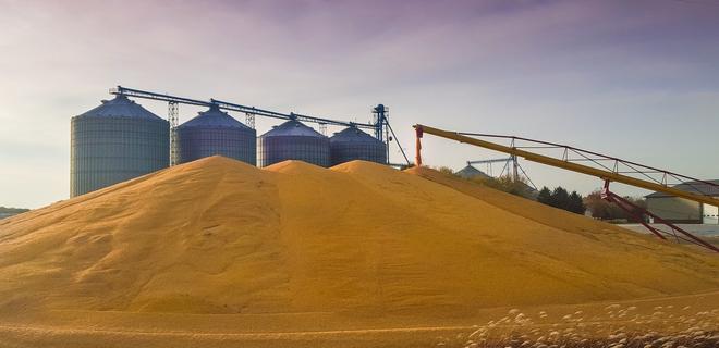 Украина уже экспортировала 35 млн тонн зерновых, но общий процент сократился на 20%
