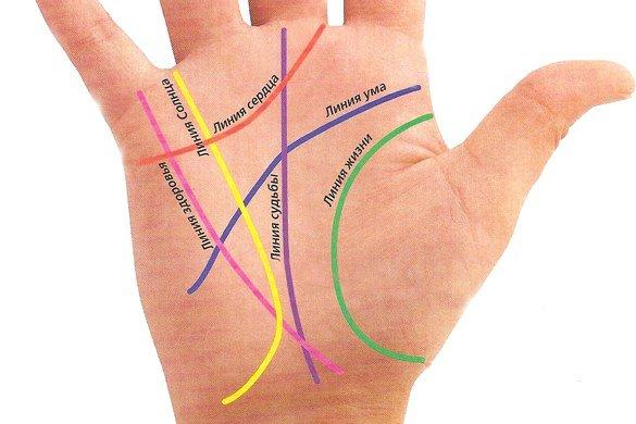 Хиромантия линии на руке